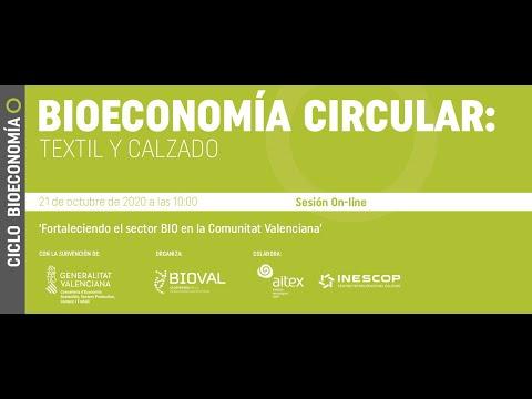 Webinar | Ciclo Bioeconomía Circular: Textil y Calzado[;;;][;;;]