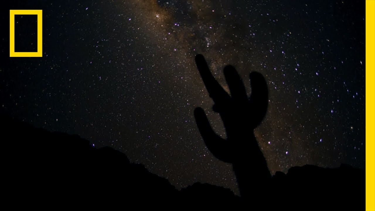 Glorious Starscapes | Untamed Americas thumbnail
