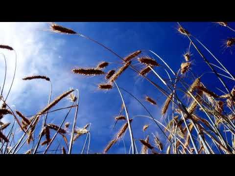 Estiva - I Feel Fine (Piano Mix) - YouTube Cut