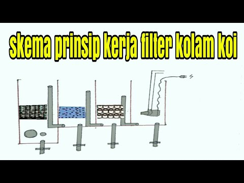 mp4 Desain Filter Kolam Koi, download Desain Filter Kolam Koi video klip Desain Filter Kolam Koi