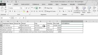 How to insert a line break in the same cell in Excel