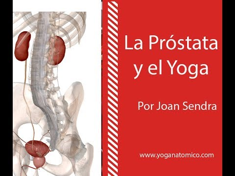 Testosterona disminuyen la prostatitis