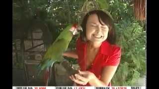 Мексика: зоопарк и шоппинг в Канкуне - Видео онлайн