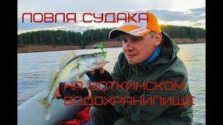 Рыбалка воткинское водохранилище отчеты о рыбалке