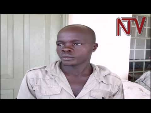 UPDF, marine police arrest Masaka fishermen over illegal fishing