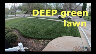 Get Your Lawn Ready For Guests | DEEP Green In Days