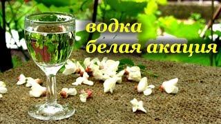 Рецепт домашней ароматной водки - белая акация