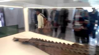 preview picture of video 'Crocodiles at museum #Shatgumbuj mosque, Bagerhat.'