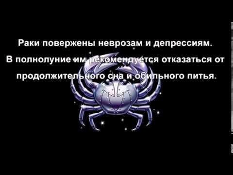 Сексуальный гороскоп скорпион на