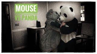 Mouse V Panda