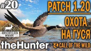 Как поставить приманку в the hunter
