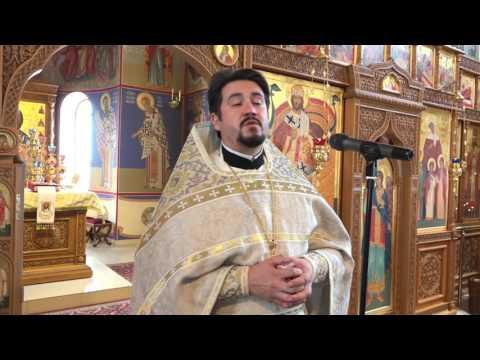 Проповедь в Неделю 9-ю по Пятидесятнице