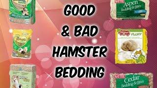 Good & Bad Hamster Bedding   Kiwi Pets  