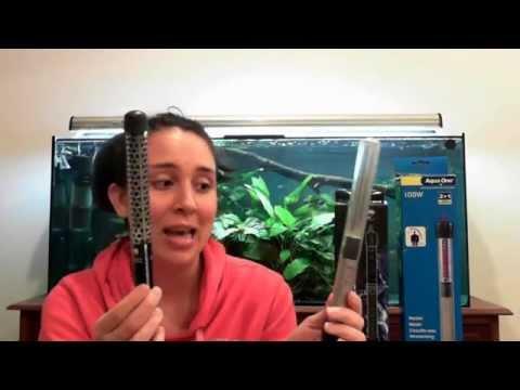 100w Aquarium Heater Review – Aqua Zonic Vs Aqua One