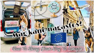 How To Bring Your Pet (Dog & Cat) To Europe | International Pet Travel | Philippines To Italy