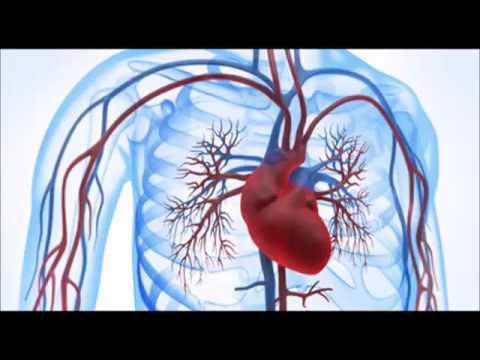 Réduire les symptômes de la glycémie chez les diabétiques