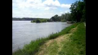 preview picture of video 'Donau bei Hochwasser in Orth an der Donau beim Uferhaus'