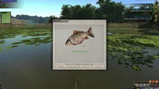 Atom fishing 2 где поймать карася на мотыль