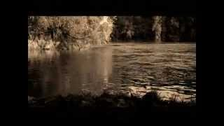 Van Morrison-Shenandoah