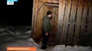 Медведь людоед терроризирует Иркутскую область