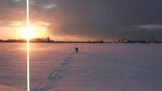 黒ラブまるちゃん真冬日の朝散歩②
