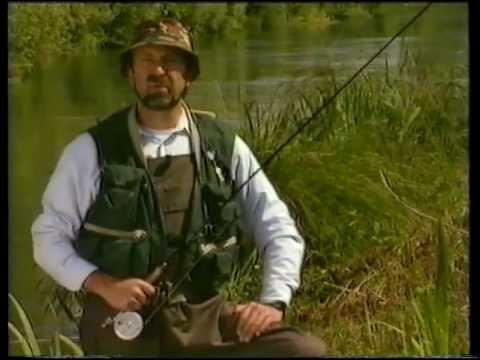 Cattura di pesca di video di una picca su laghi