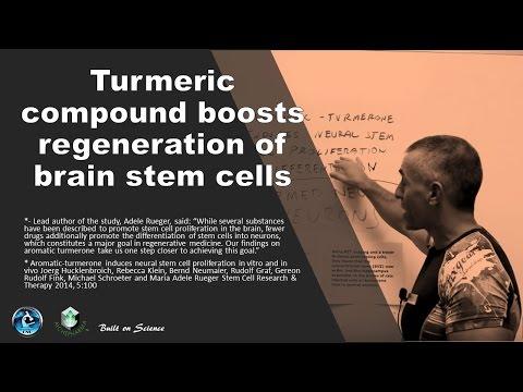 Video ???? Turmeric compound boosts regeneration of brain stem cells