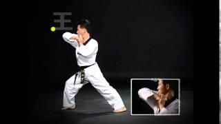 Taekwondo Taegeuk Form 1-8