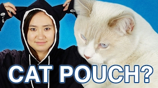 Download Youtube: I Carried My Cat Like A Kangaroo For A Day