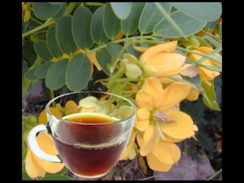 Senna Leaf Tea The Best Remedy For Constipation And