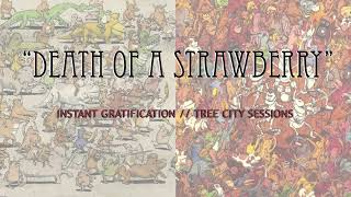 Dance Gavin Dance - Death of a Strawberry (Instant Gratification // Tree City Sessions)