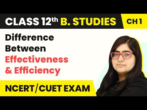 Difference Between Effectiveness and Efficiency | Class 12 Business Studies