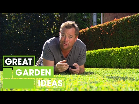 Tips For The Perfect Green Lawn | Gardening | Great Home Ideas