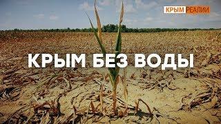 Как Крым живет без днепровской воды