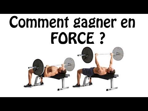 La force des muscles la physiologie