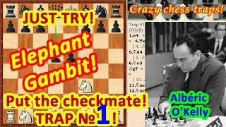 Elephant Gambit ♗ Chess Traps #1 In The Opening Video For Beginners