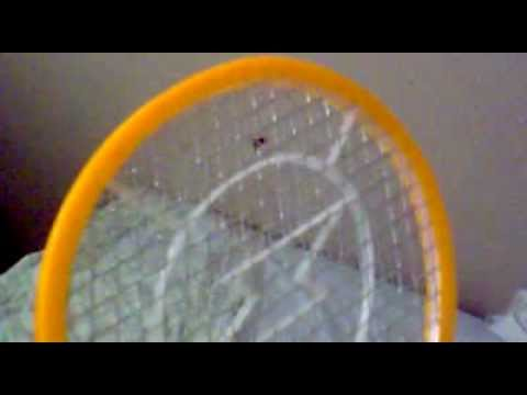 Raqueta mata moscas