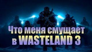 Wasteland 3.  Что меня смущает.  [ИГРОЕД]