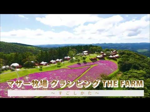 『マザー牧場 グランピング THE FARM』のすごしかた