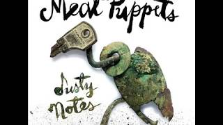 Meat Puppets Studio Albums Ranked Worst To Best