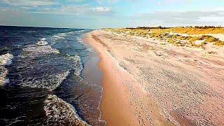 Drönare - En dag på stranden