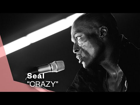 Crazy (1990) (Song) by Seal
