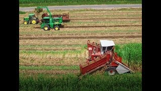 Louisiana Sugarcane planting 2018 4K Drone Video