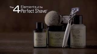 The Art of Shaving Perfect Shave