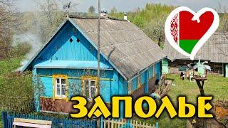 Деревня ЗАПОЛЬЕ 🏡 Белорусская Глубинка 🇧🇾 Заброшенное Село