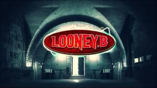 20 Fingers   Short Dick Man (Looney B 2K14 Remix) Free Download