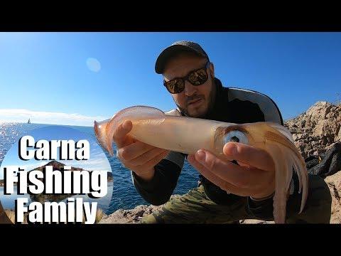 Fiskeri efter blæksprutter med fiskestang