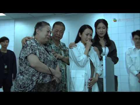 Hong kong tvb drama 2012 : Windows movie maker 2 6 para vista