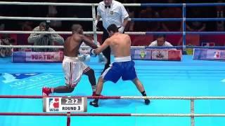 Russia Boxing Team v Cuba Domadores - World Series of Boxing Season V Highlights