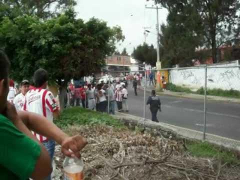 Bronca Necaxa vs pumas Morelos, Estadio Centenario..